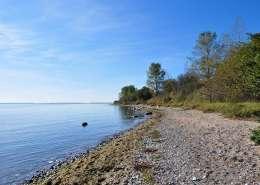 Gelbes Ufer