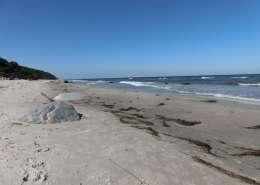 Rügen Strandurlaub